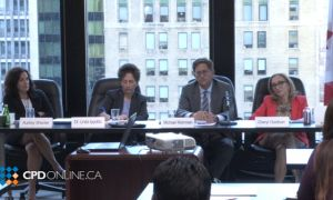 Negotiate, Mediate, Litigate: Best Practices In High Conflict Family Law Matters