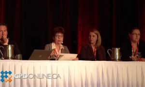 Bail Panel: Issues in process and pilot project