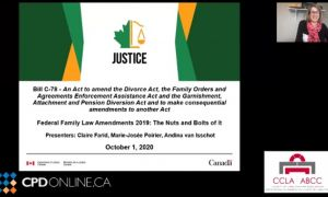 Family Law Conference: Part 1 – Divorce Act Amendments. Presentation of the Department of Justice: Introduction; Inter-jurisdictional Provisions; 2007 Convention; 1996 Convention