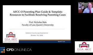 Family Law Conference: Part 2 Parenting Plans & Diminishing Conflict. Parenting Plans