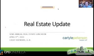 The Real Estate Update; Closing Documents; The Environmental Indemnity That Couldn't: Drafting Pitfalls