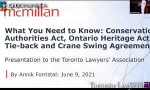 Toronto Real Estate Practice Issues